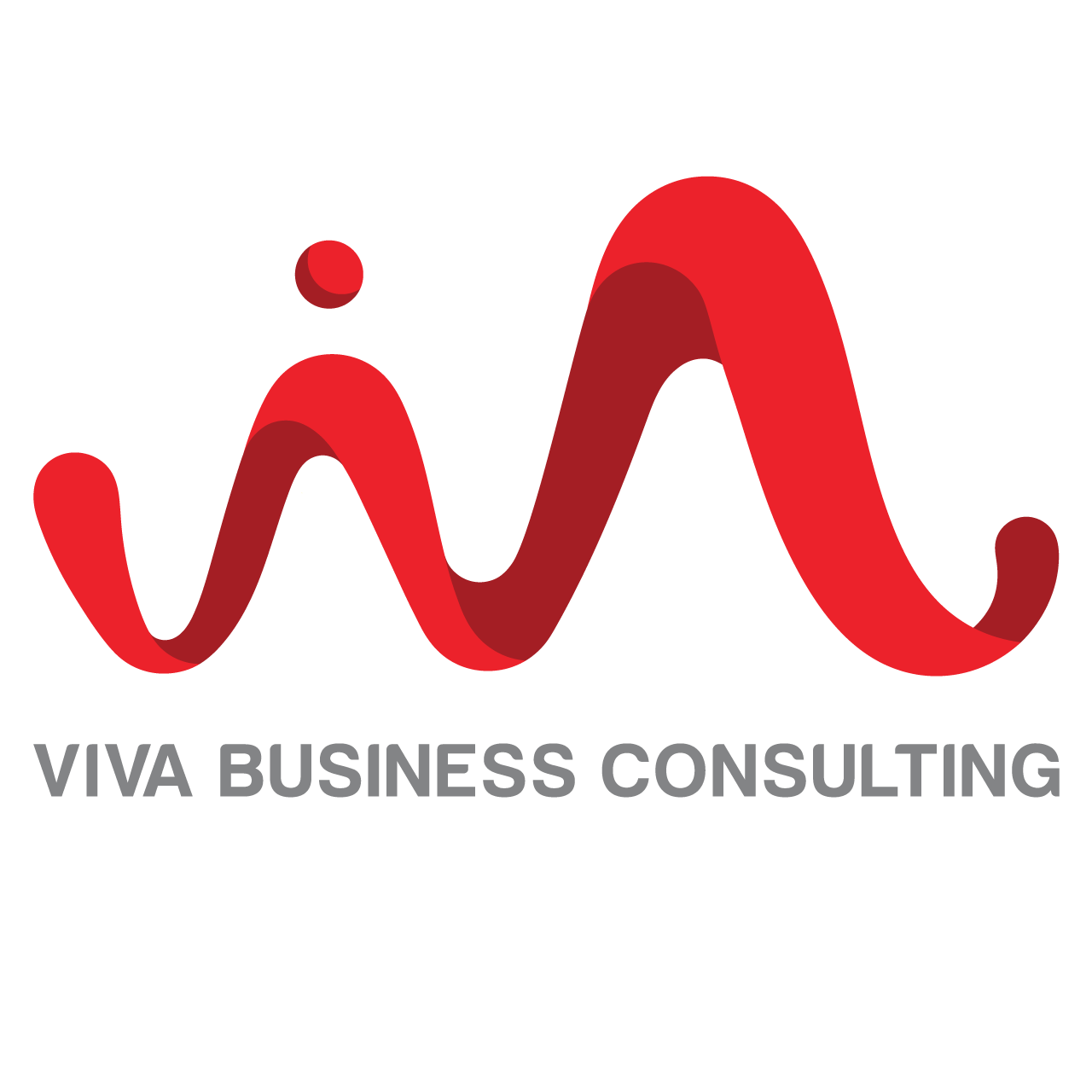 VIVA Business Consutling