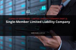 Single-Member Limited Liability Company