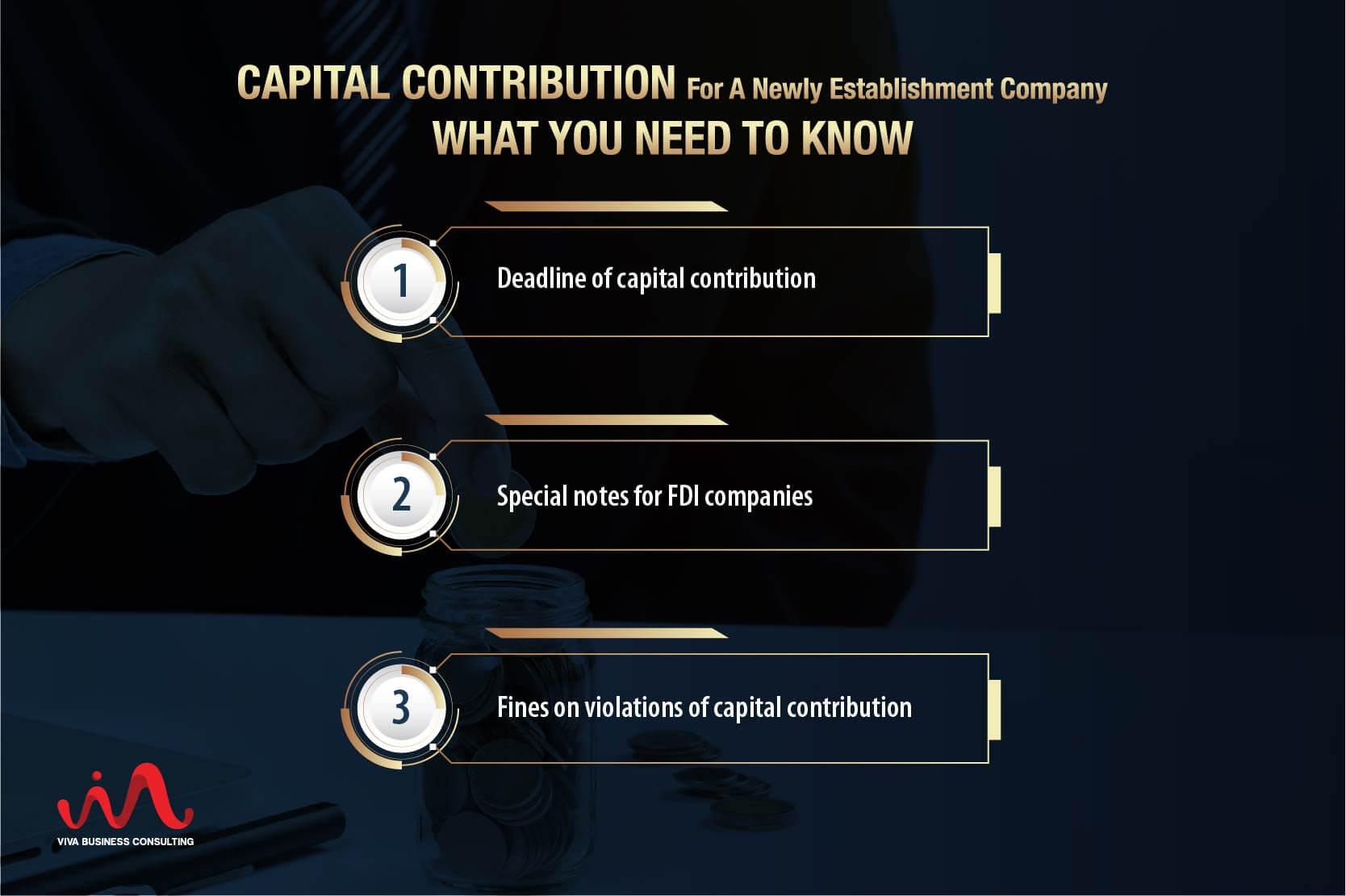 Capital Contribution For Establishment A Company