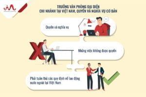 Quyền và nghĩa vụ của Trưởng văn phòng đại diện, chi nhánh tại Việt Nam