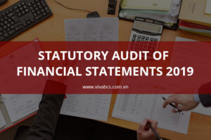 Statutory Audit Of Financial Statements 2019