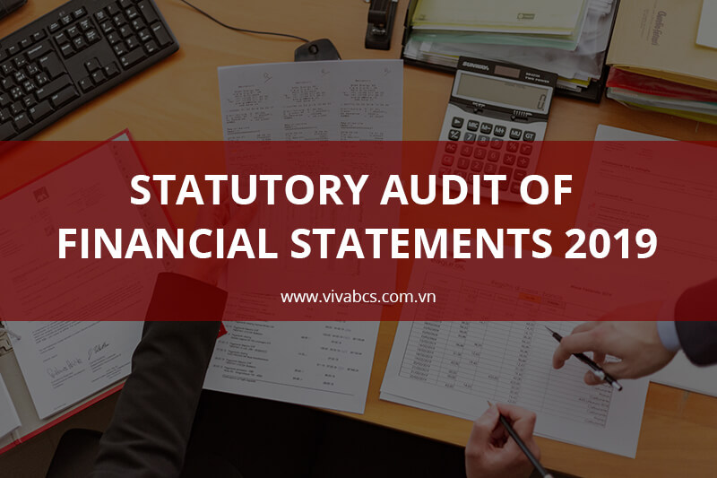 Statutory Audit Of Financial Statements 2019